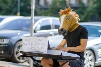 Все мы немного лошади как